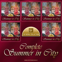 Summer in City Complete