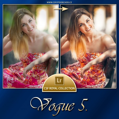 Vogue 5