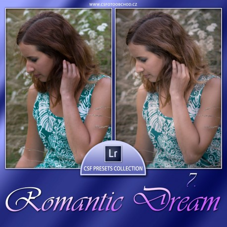 Romantic Dream 7