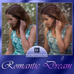 Romantic Dream 8