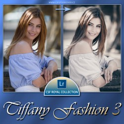 Tiffany Fashion 3