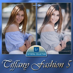 Tiffany Fashion 5