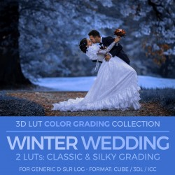 Winter Wedding LUT