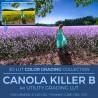 Canola Killer B LUT