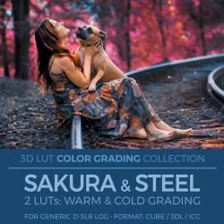 Sakura & Steel LUT