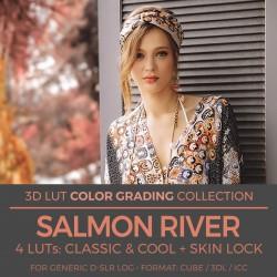 Salmon River LUT