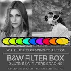 B&W Filter Box LUT