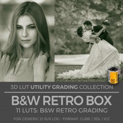 B&W Retro Box LUT