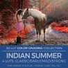 Indian Summer LUT