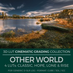 Other World LUT