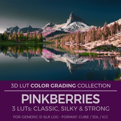 Pinkberries LUT