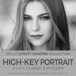 BW High-Key Portrait LUT