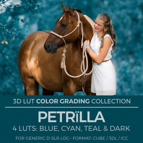 Petrïlla LUT
