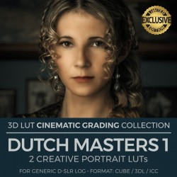 Dutch Masters 1 LUT