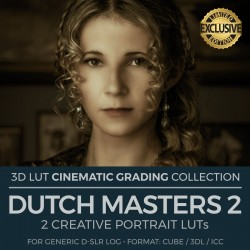 Dutch Masters 2 LUT