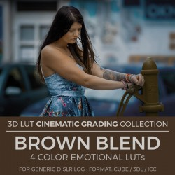 Brown Blend LUT